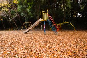 scene[park]_03の写真素材 [FYI00446221]