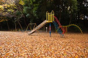 scene[park]_04の写真素材 [FYI00446223]
