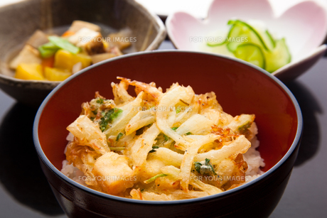 mixture_of_vegetable_bits_and_cuttlefish_fried_in_bowl_1の素材 [FYI00446308]