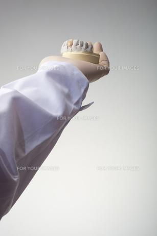 hands(teeth)_01の写真素材 [FYI00446351]