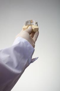 hands(teeth)_06の写真素材 [FYI00446355]
