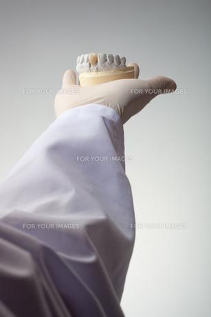 hands(teeth)_07の写真素材 [FYI00446365]