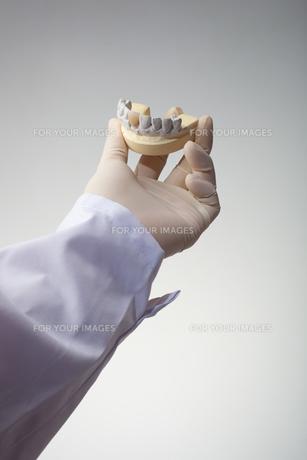 hands(teeth)_03の写真素材 [FYI00446370]