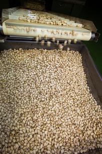 food[nuts]_04の写真素材 [FYI00446402]
