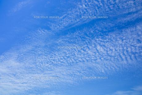 background[autumn_sky]_20の素材 [FYI00446796]