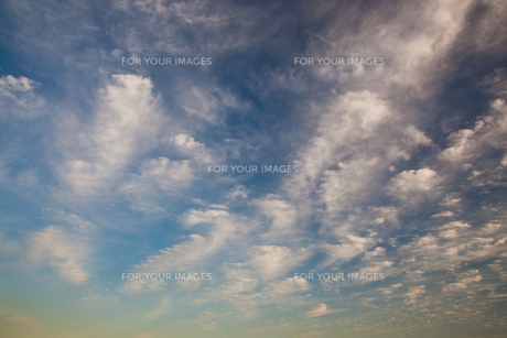 background[cirrostratus_sky]_034の素材 [FYI00446856]