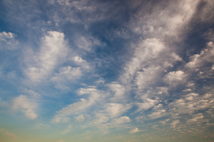 background[cirrostratus_sky]_034の写真素材 [FYI00446856]