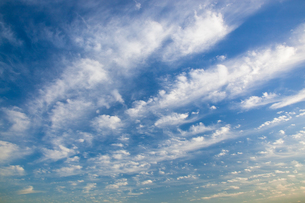background[cirrostratus_sky]_035の写真素材 [FYI00446880]