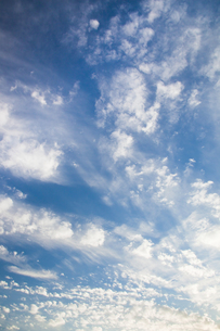 background[cirrostratus_sky]_087の写真素材 [FYI00446894]