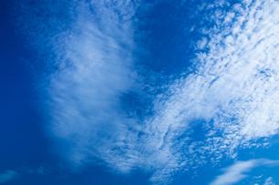 background[autumn_sky]_076の写真素材 [FYI00446895]