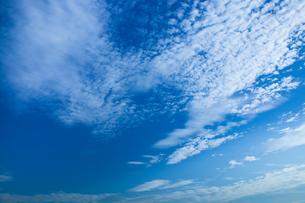 background[autumn_sky]_079の写真素材 [FYI00446896]