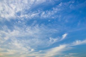 background[cirrostratus_sky]_067の写真素材 [FYI00446906]