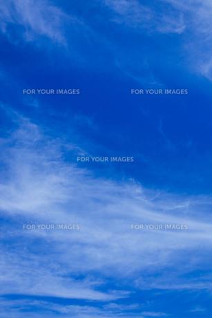 sky_10の素材 [FYI00446921]