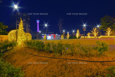 illumination[Mountain_America_Park]_20の素材 [FYI00447222]