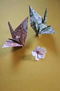 折鶴とサクラの写真素材 [FYI00447831]