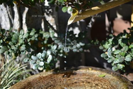 滴る水の写真素材 [FYI00448232]