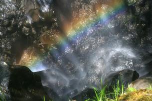 善五郎滝の虹の写真素材 [FYI00448298]
