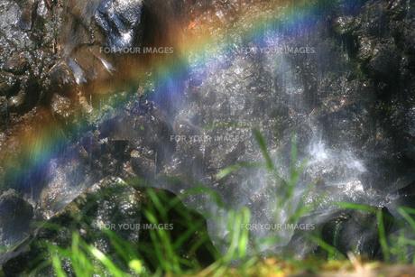 善五郎の滝の虹の写真素材 [FYI00448301]