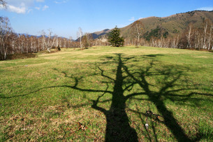 一ノ瀬の草原に伸びる影の写真素材 [FYI00448311]