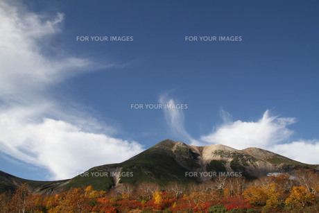 紅葉の乗鞍岳の写真素材 [FYI00448326]