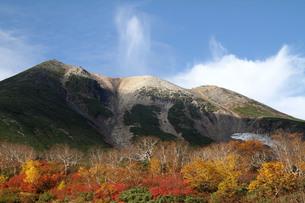 紅葉の位ヶ原から見る乗鞍岳の写真素材 [FYI00448336]