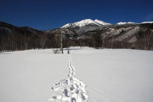 一ノ瀬の雪原の写真素材 [FYI00448339]