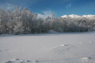 乗鞍岳と雪原の写真素材 [FYI00448343]