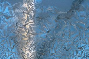 窓の霜模様の写真素材 [FYI00448355]