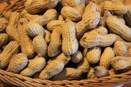 殻付きピーナッツの写真素材 [FYI00448366]