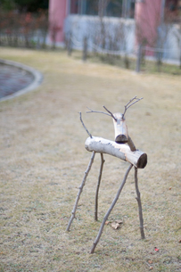 冬の木のトナカイの写真素材 [FYI00448406]