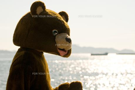 きらめく海とクマの写真素材 [FYI00448438]