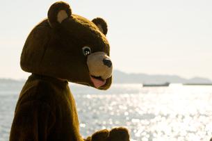 きらめく海とクマの素材 [FYI00448438]