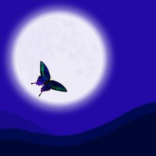 月と蝶の写真素材 [FYI00448477]