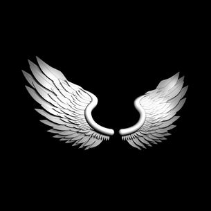 翼の写真素材 [FYI00448514]