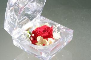 クリスタルケースと赤いバラの写真素材 [FYI00448811]