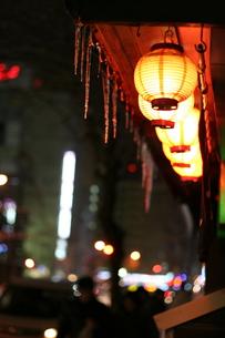 冬と光の写真素材 [FYI00448813]