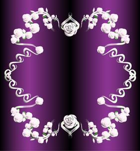 バラのフレーム2銀と紫の写真素材 [FYI00449081]