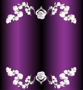 バラのフレーム銀と紫の写真素材 [FYI00449095]