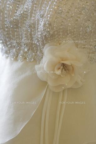 清楚なドレスの写真素材 [FYI00449128]