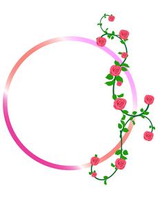 小バラのフレーム円の写真素材 [FYI00449134]