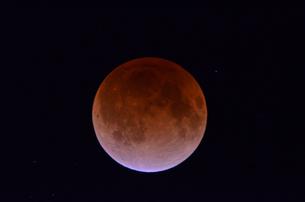 皆既月食の写真素材 [FYI00449212]