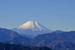 高尾山頂から望む富士山の写真素材 [FYI00449215]