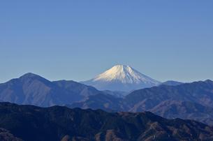 高尾山頂から眺めた富士山の写真素材 [FYI00449224]