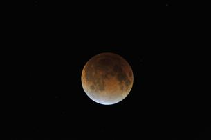 皆既月食の写真素材 [FYI00449226]