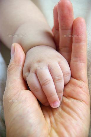 赤ちゃんと母の手の素材 [FYI00449446]