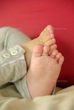 赤ちゃんの足の写真素材 [FYI00449455]