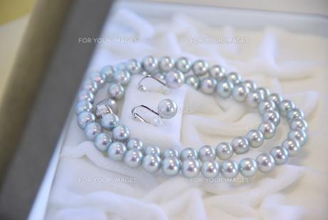 真珠のネックレスの写真素材 [FYI00449461]