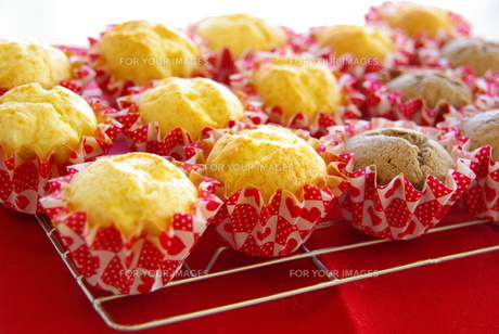 たくさんのカップケーキの写真素材 [FYI00449477]