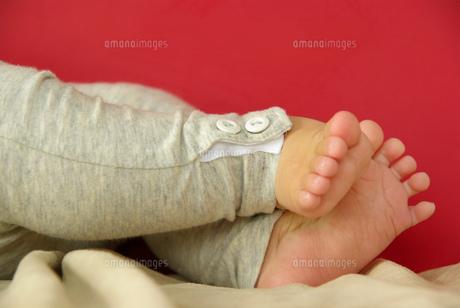 赤ちゃんの足の写真素材 [FYI00449481]