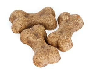 犬のクッキーの写真素材 [FYI00449526]